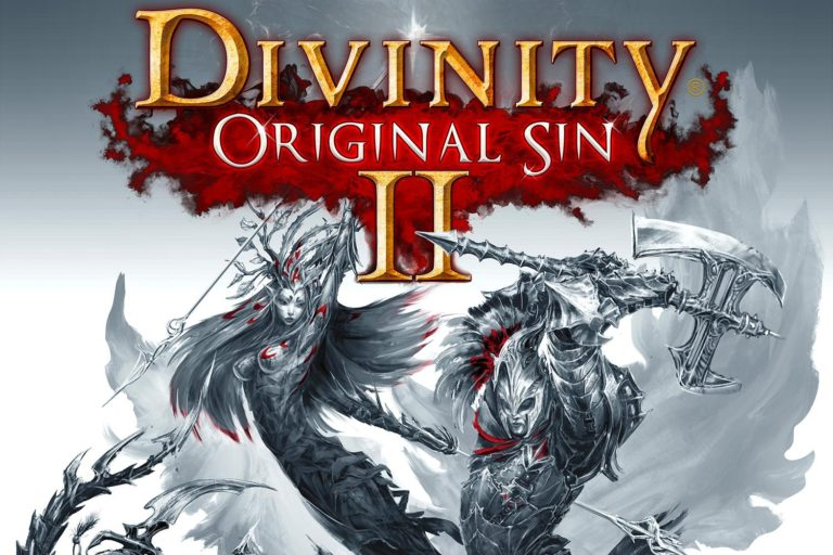 Divinity-Original-Sin-2-Setup-Free-Download